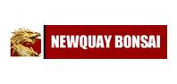 Newquay-bonsai
