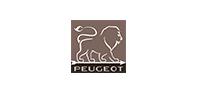 PSP Peugeot