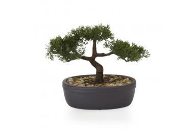 Pot à bonsai